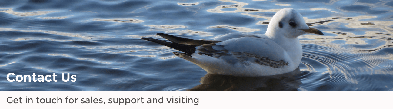 contact banner bird on the water